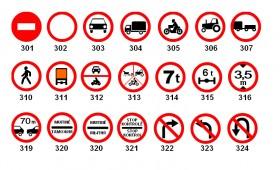 Auto taisyklės